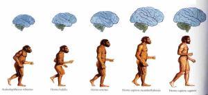 La_evolución_del_hombre