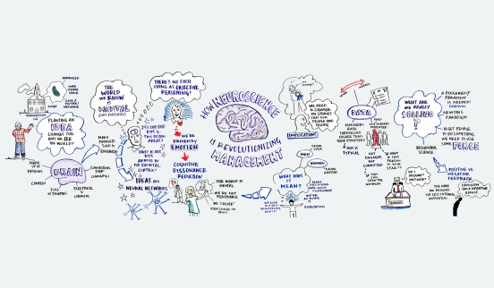 graphic-facilitation-neuroscience